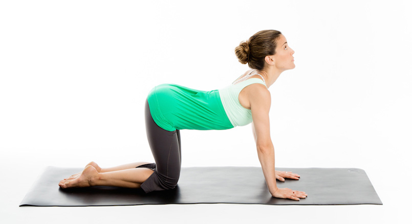 yoga yin exercices posture vache